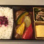 京都駅で駅弁「京老舗 手づくりハンバーグ弁当」を食べながら帰る